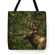 Hiding In The Woods Tote Bag