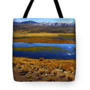High Altitude Reflections Tote Bag