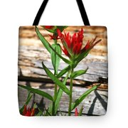 High Country Wildflowers Tote Bag