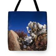 High Desert Snow 2 Tote Bag