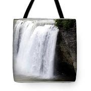 High Falls In Rochester New York Tote Bag