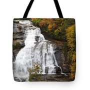 High Falls In The Dupont State Forest Tote Bag