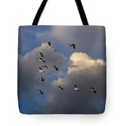 High Flight Tote Bag