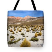 High In The Chilean Altiplano Tote Bag