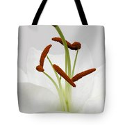High Key Tote Bag