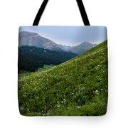 High Meadow  Tote Bag