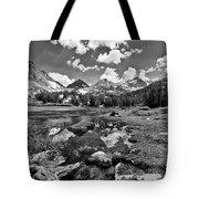High Sierra Meadow Tote Bag