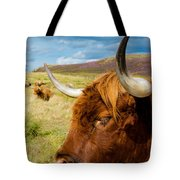Highland Cattle On Scottish Pasture Tote Bag