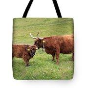 Highland Caws Tote Bag
