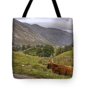 Highland Cow In Scotland Tote Bag
