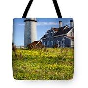 Highland Light Spring Tote Bag