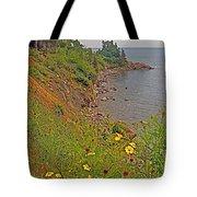 Highlands Coastline In Cape Breton Highlands Np-ns Tote Bag