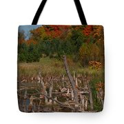 Highway 27 Tote Bag