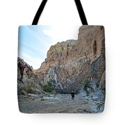 Hiker In Big Painted Canyons Trail In Mecca Hills-ca Tote Bag