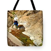 Hiker On Window Trail In Chisos Basin In Big Bend National Park-texas   Tote Bag