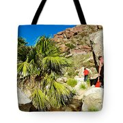 Hikers At Oasis On Borrego Palm Canyon Trail In Anza-borrego Desert Sp-ca  Tote Bag
