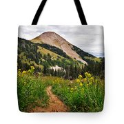 Hiking In La Sal Tote Bag
