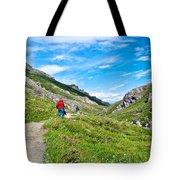 Hiking On Savage River Trail In Denali Np-ak    Tote Bag