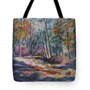 Hiking To A Vision Tote Bag