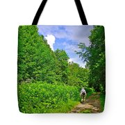 Hiking Trail Along Rivier Du Nord In The Laurentians North Of Montreal-qc Tote Bag