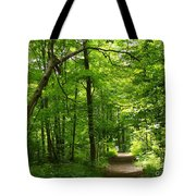 Hiking Trails To Mont Morency Falls Tote Bag