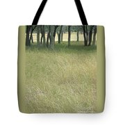 Hill Country Calm Tote Bag