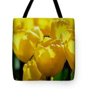 Hill Of Golden Tulips Tote Bag