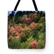 Hill Side Colors Tote Bag