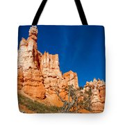 Hillside Carvings Tote Bag