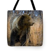 Hillside Grizzly Tote Bag