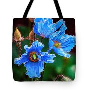 Himalayan Blue Poppy Flower Tote Bag