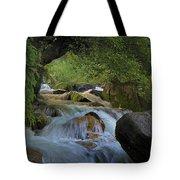 Himalayan Nectar... Tote Bag