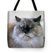 Himalayan Persian Cat Tote Bag