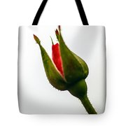 Hint Of A Rose Tote Bag
