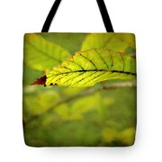Hint Of Autumn Tote Bag