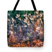 Hint Of Fall Colors 15813 Tote Bag