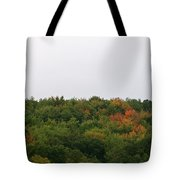 Hints Of Autumn Tote Bag