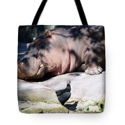 Hippo And Friend Tote Bag
