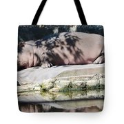 Hippo At Leisure Tote Bag