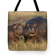 Hippo Cow And Calf Tote Bag