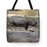 Hippo - Family Tote Bag