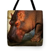 Hippo On The Waterfront Tote Bag