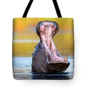 Hippopotamus Displaying Aggressive Behavior Tote Bag