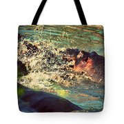 Hippopotamus Fight In River. Serengeti. Tanzania Tote Bag