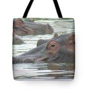 Hippopotamus In Kenya Tote Bag