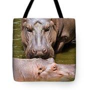 Hippopotamus In Water Tote Bag