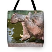 Hippopotamus With Open Mouth Tote Bag