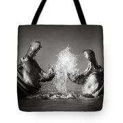 Hippo's Fighting Tote Bag by Johan Swanepoel
