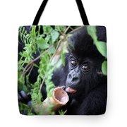 Hirwa Infant Tote Bag