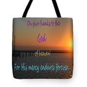 His Mercy Endures Forever Tote Bag
